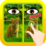 Find Spot The Difference #17 1.03 APK