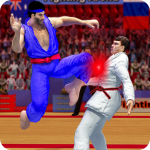 Tag Team Karate Fighting Tiger: World Kung Fu King 2.1.264 APK