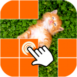 What is picture behind cell 0.3.6 APK