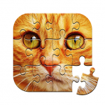 Unlimited Puzzles – free jigsaw for kids and adult 2.15.5  APK