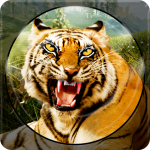 Forest Animal Hunting 2018 – 3D 1.2.6  APK