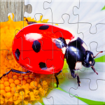 Insect Jigsaw Puzzles Game – For Kids & Adults 🐞 25.2 APK
