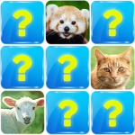 Memory Game: Animals 6.4   APK