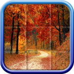 Beautiful puzzles 2.8 APK