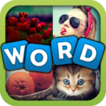 Find the Word in Pics  APK