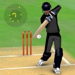 Smashing Cricket – a cricket game like none other 3.0.2 APK