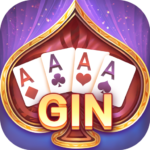 Gin Rummy – Texas Poker  APK